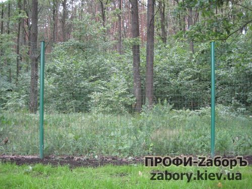 zabor_setka_pvh-6
