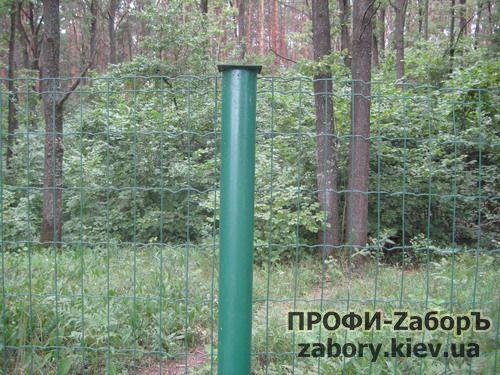 zabor_setka_pvh-7